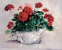 Geraniums in the Shell